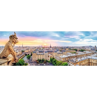 Panorama - View from the Cathedral of Notre-Dame d