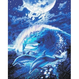 Crystal Art Moonlight dolphins full-portet