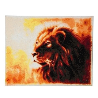 Crystal Art proud lion full-landscape 40x50 cm
