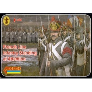 French Line Infantry Standing At Attention