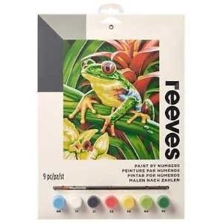 Paint By Numbers Tree Frog