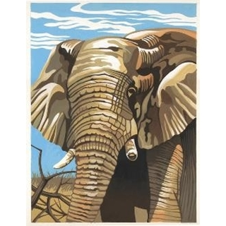 Paint By Numbers Elephant
