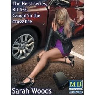 The heist series Sarah Woods
