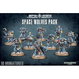 Adeptus Astartes Space Wolves Pack