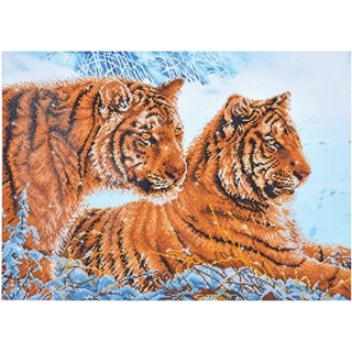 Tigers in the Snow  71 x 51cm