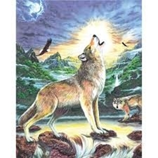 A4 - WOLVES BY STREAM