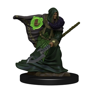 D&D - Icon od the Realms - Elf Druid