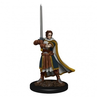 D&D - Icon of the Realm - Human Cleric Male
