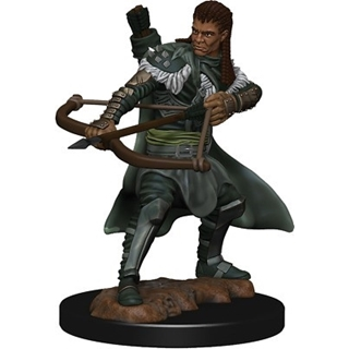 D&D - Icon of the Realm - Human Ranger Male