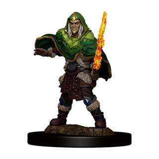D&D - Icon of the Realm - Elf Fighter