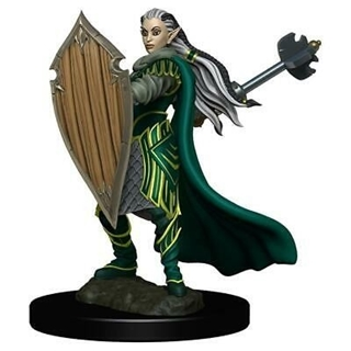 D&D - Icon of the Realm - Elf Paladin Female